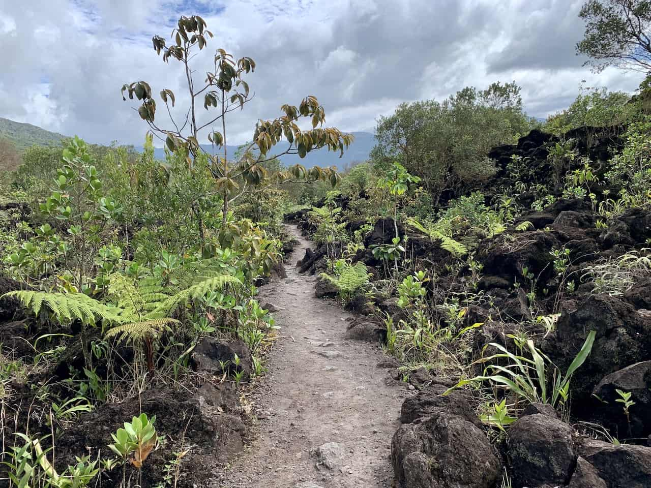 Lava Flow Hike Arenal 1968